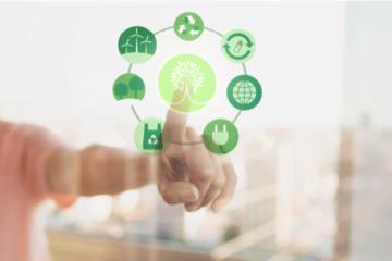 Susținerea protecției mediului – O prioritate pentru companii
